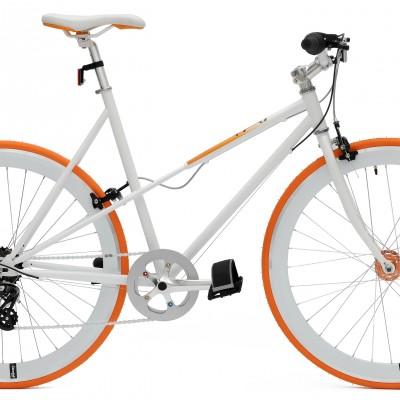 cheetah-ladies-gears-orange.jpg